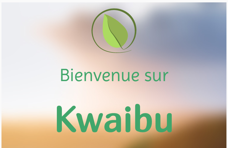 thumbnail de Kwaibu